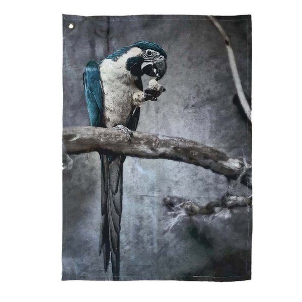 NEU! KÜCHENTUCH PARROT - PAPAGEI - SET OF 2 - 50/70cm - BY IMBARRO